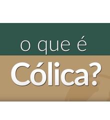 JA Online - Cólica