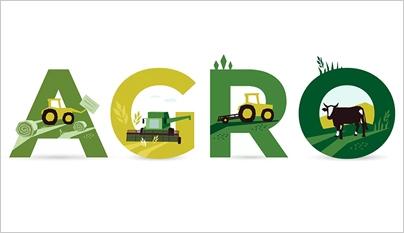 Agropecuária cresce acima do PIB do País.