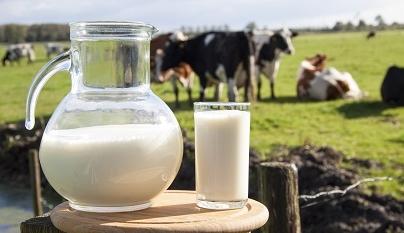 Setor de orgânicos cresce globalmente e lácteos registram alta no Brasil